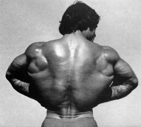 franco-back