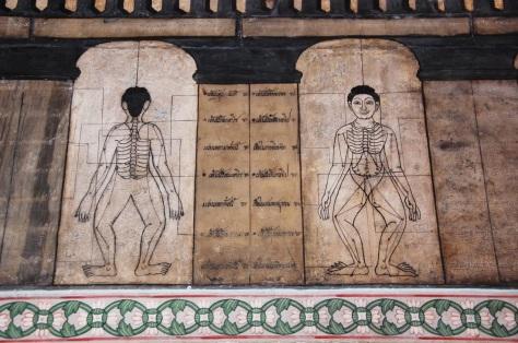 thai yoga script